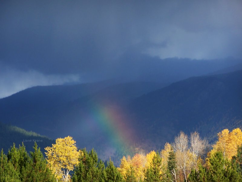 beautiful rainbow from a fall storm in the rockies.