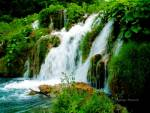 Hike to the waterfalls.  Hiking and backpacking trips.  Recreation
