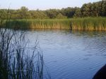 Fishing lake in Bulgaria.  Fishing lures, fishing poles, tackle.  Fishing equipment.