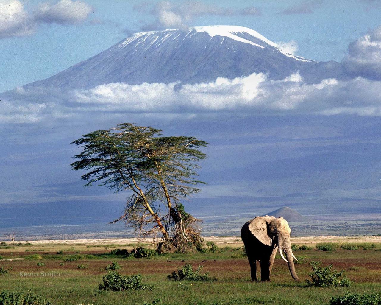 http://www.naturepicoftheday.com/npods/2009/february/plains_below_kilimanjaro_1280x1024.jpg