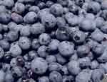 blueberries, antioxidants, cranberries, health