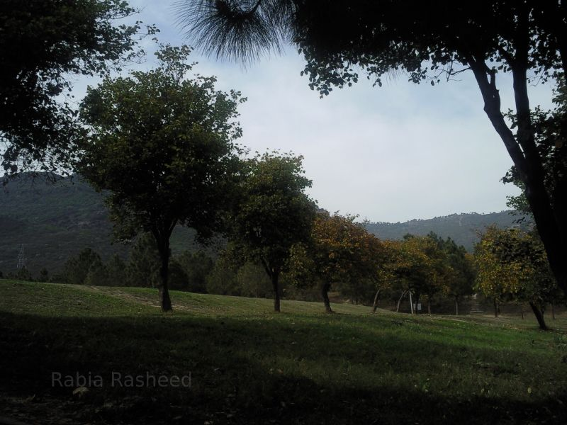 Gardens of Faisal Mosque,surrounded by  Margalla Hills.