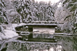 Stone bridge covered in snow and ice