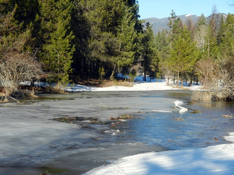 Snow and ice covered pond in Montana