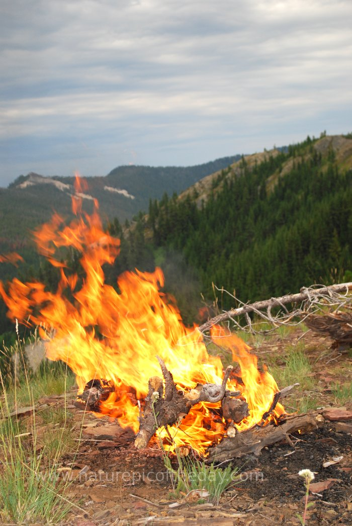 Camp Fire On The Rocky Mountains