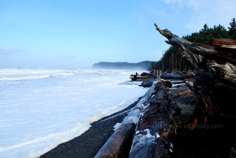 Waves, gravel beach, trees in Washington