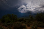 Lighting storm in Saguaro National Park, Tucson Arizona