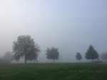 Foggy Morning in Pennsylvania