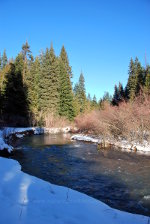 Mountain stream in the winter.