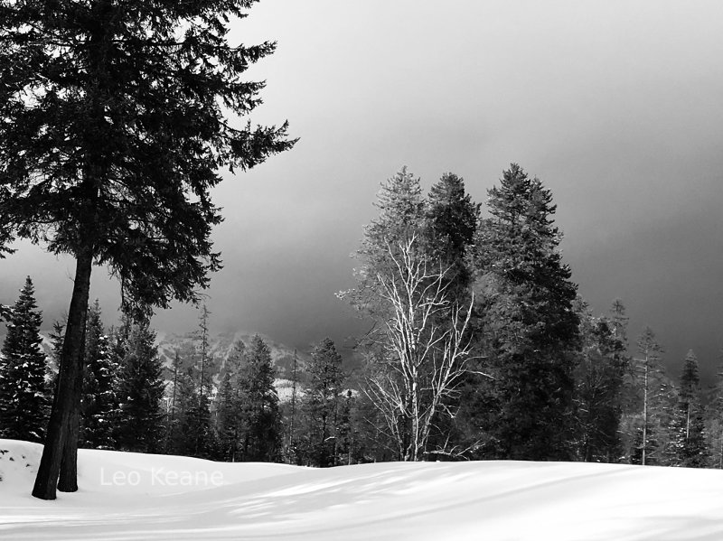 Snow covered Whitefish Lake Golf Course