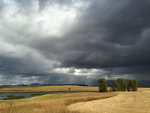 Beautiful storm over the wheat fields in Western Montana