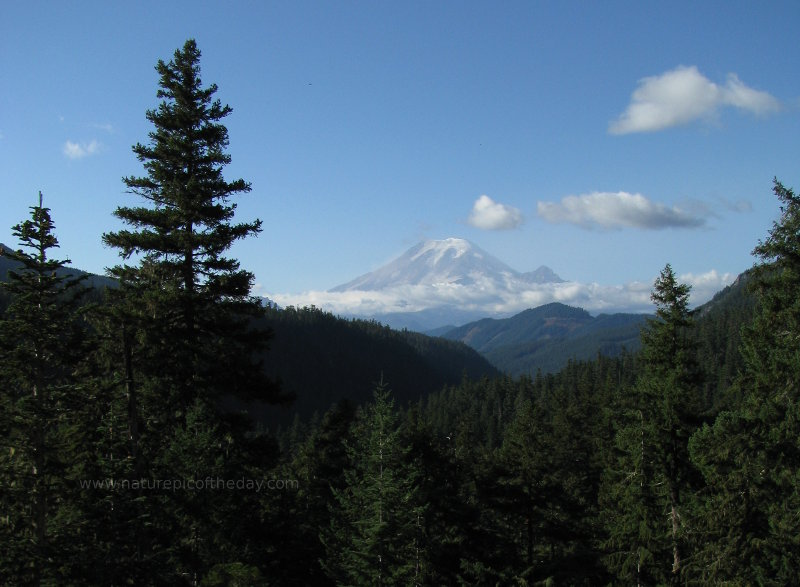 Mount Rainier in The Evergreen State
