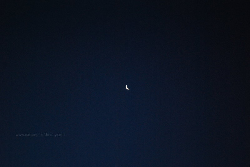 Crescent Moon at night.