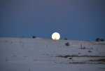 Moonset in Winter