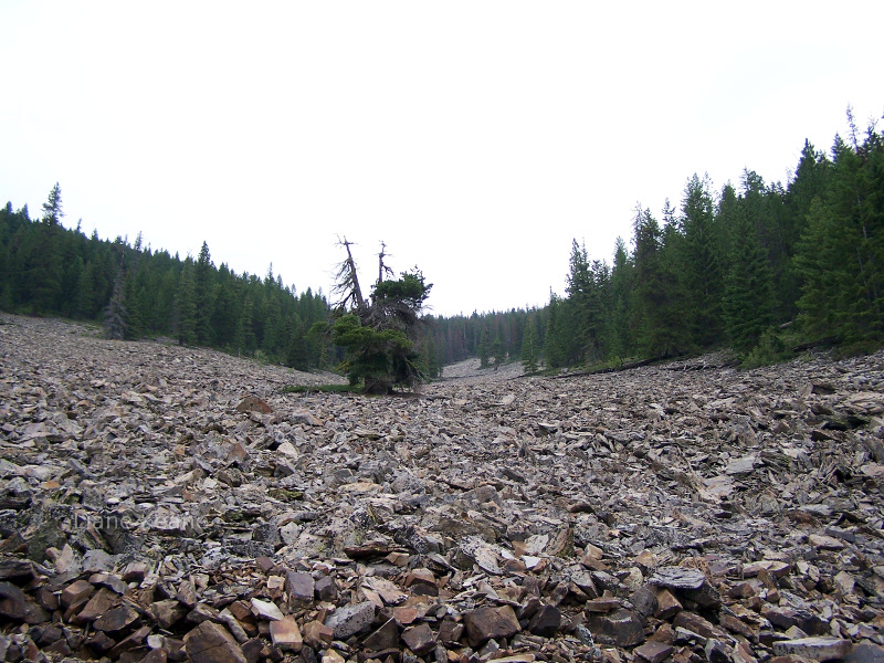 Rocky, talus slope in the Rocky Mountains of Montana