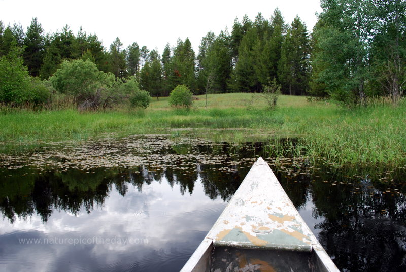 Canoeing in a pond