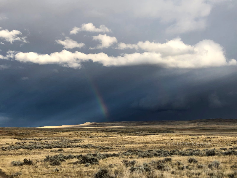 Rainbow in Wyoming