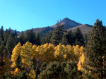Fall Colors in the Sierra Nevadas