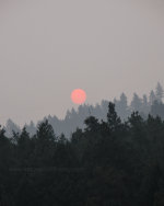 Smoke from the wildfires obscures the sun enough to see it