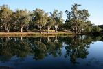 Reflections In Edward River, New South Wales, Australia