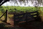 Gate access to a field in Brazil