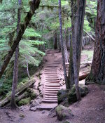 Stairs on a waterfall trail in Oregon